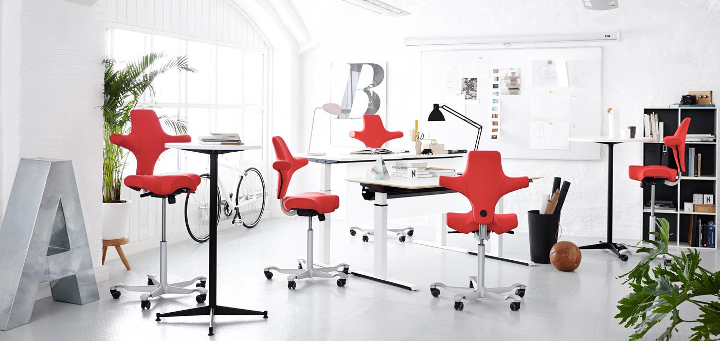 Hag kantoormeubilair Den Haag capisco ergonomische stoel Heering Office