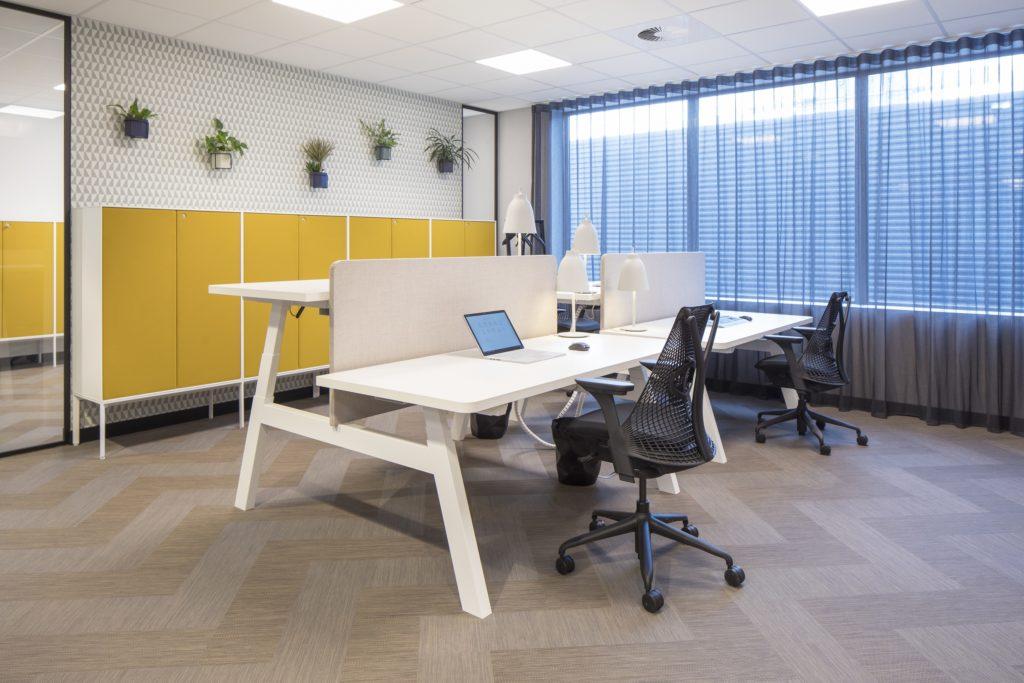 Drentea Picnic bureau Heering Office Den Haag