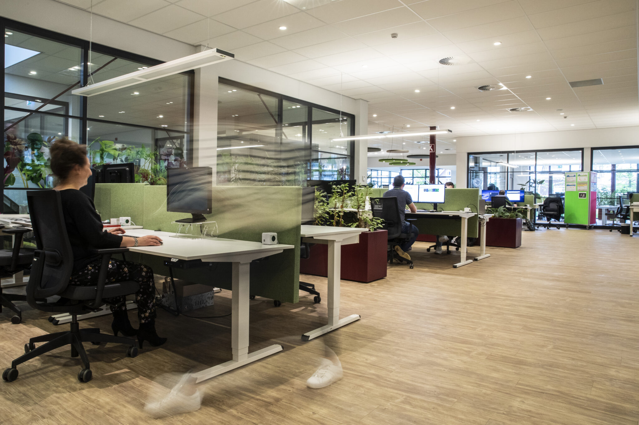 Project Koppert Cress Heering Office Den Haag